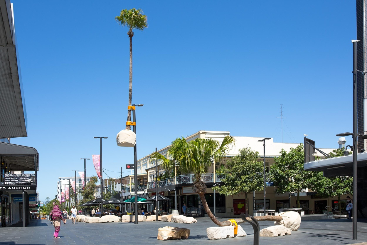 Mike Hewson: Illawarra Placed Landscape (installation view) - Crown Street Mall, Wollongong