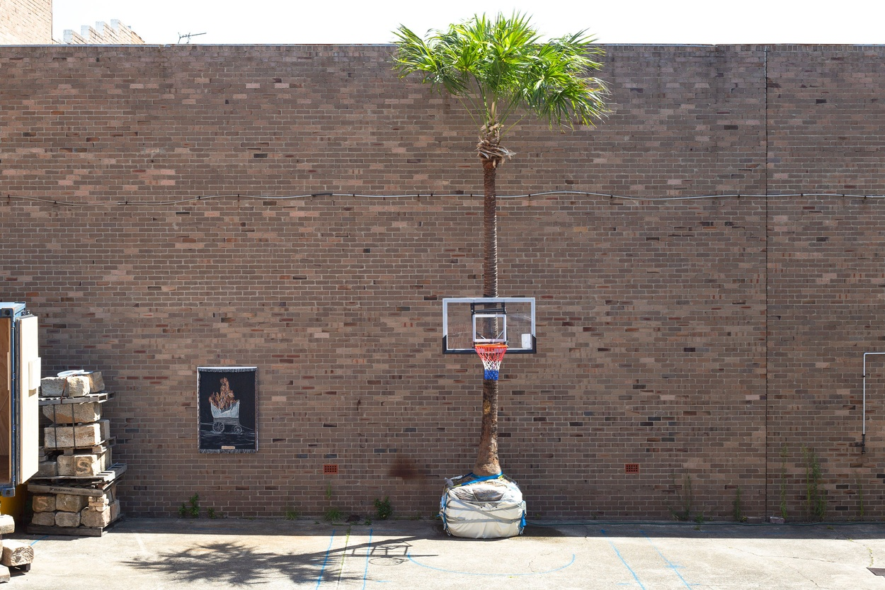 Mike Hewson: Palm Hoop #1 -