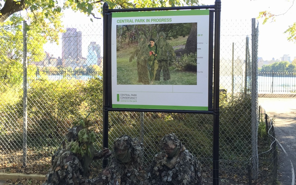 Mike Hewson: Central Park In Progress - Central Park, New York City