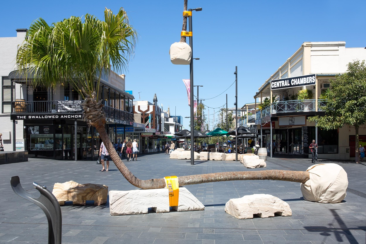 Mike Hewson: Palm Seat (Church St) - Crown Street Mall, Wollongong