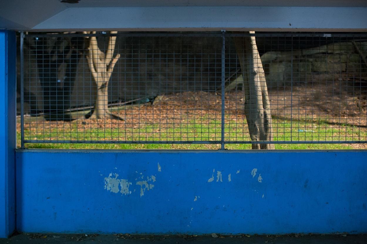 Mike Hewson: (Installation View) - Level 2, 2/9A Elizabeth Bay Rd,  Sydney