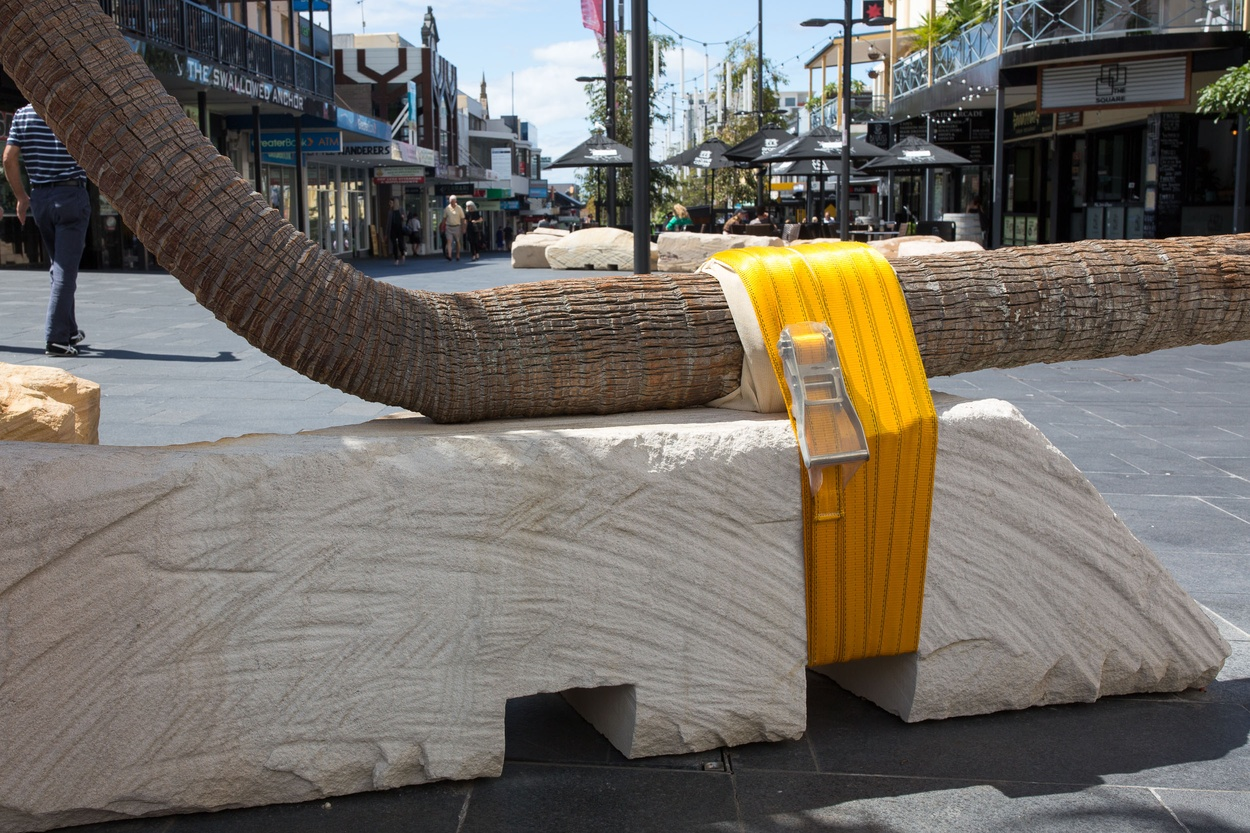 Mike Hewson: Palm Seat (Church St) DETAIL - Crown Street Mall, Wollongong